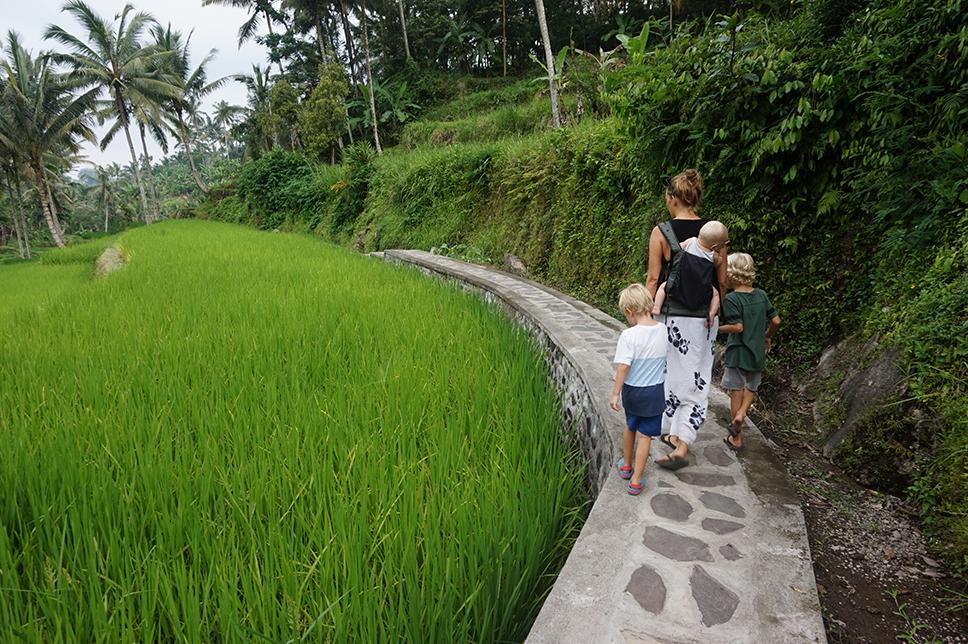 Utflykter på Bali